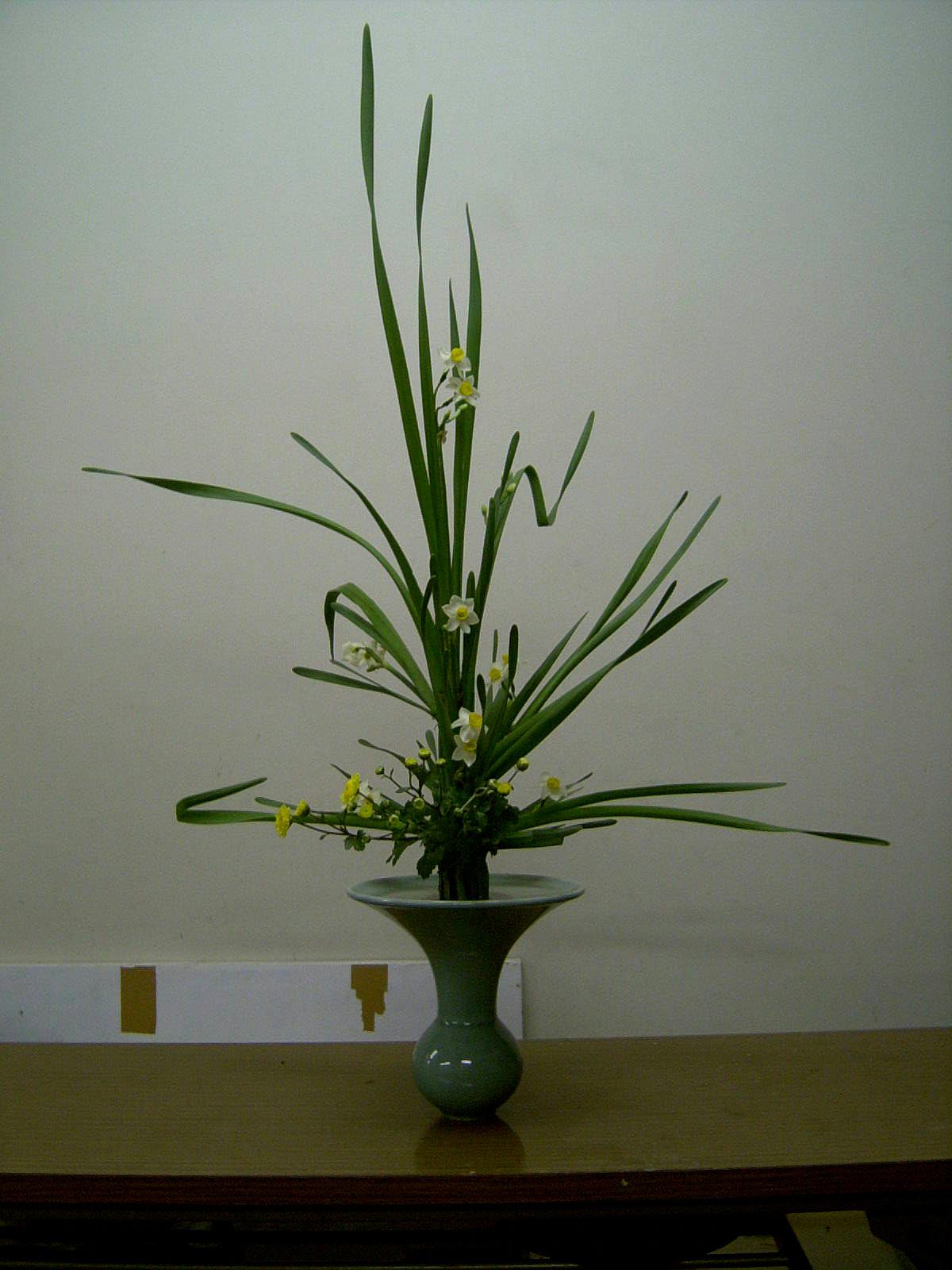 立花正風体 水仙、小菊