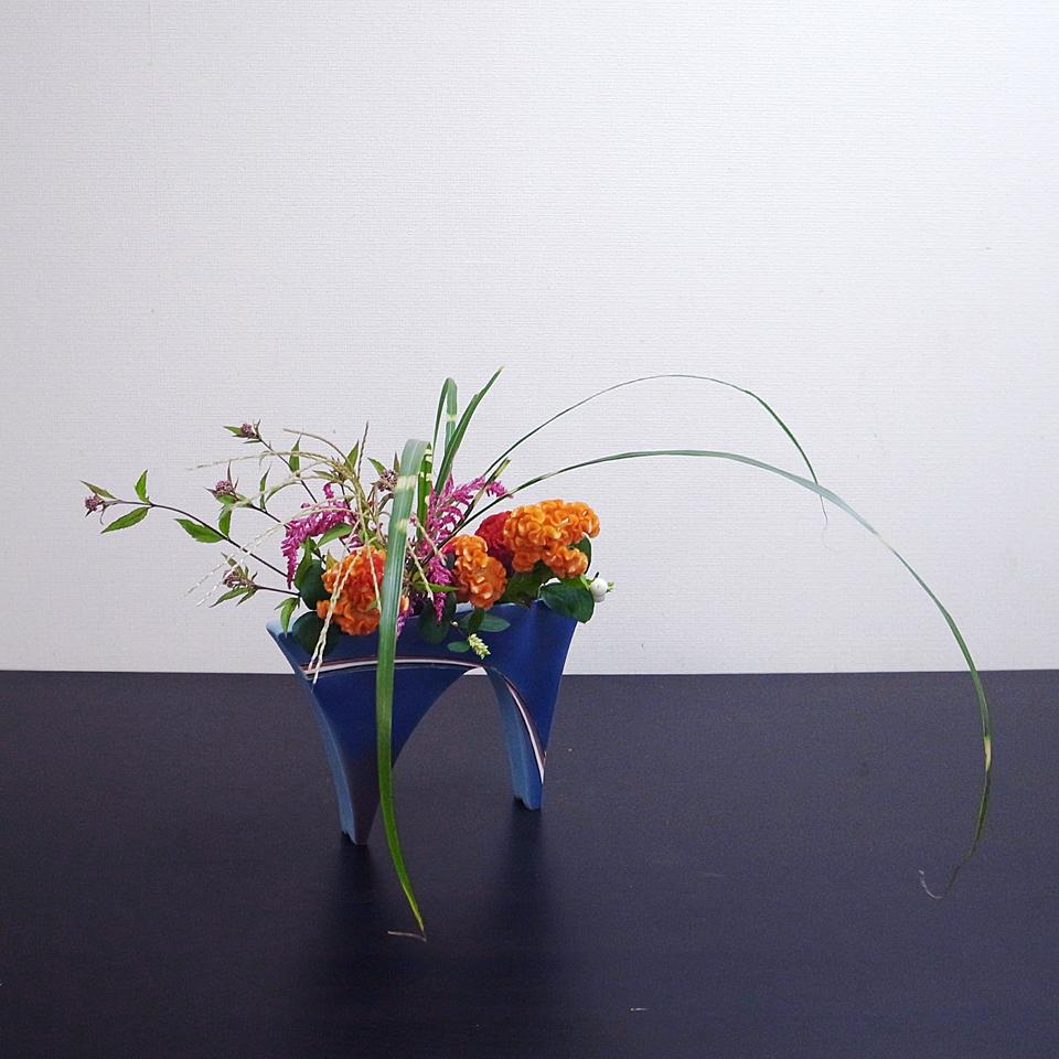 自由花 鶏頭、薄、藤袴、シンフォリカルポス