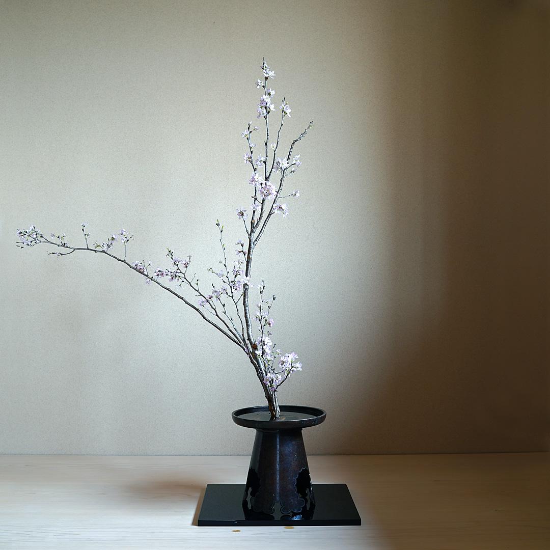 生花正風体 桜