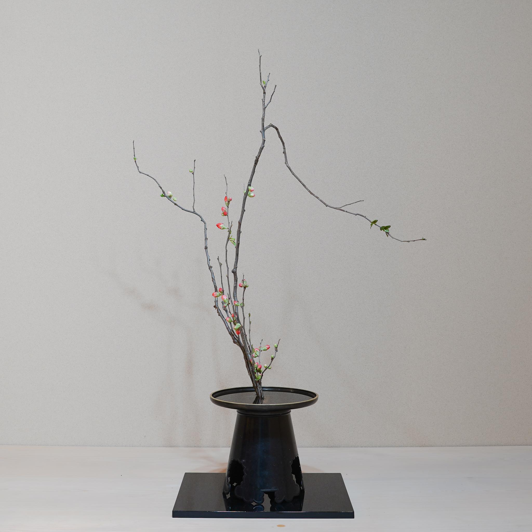 花木の季節