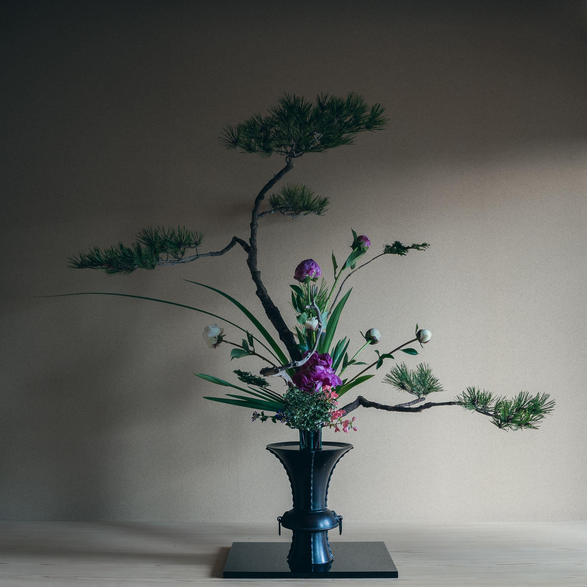 古典立花 松、芍薬、花菖蒲、オクロレウカ、つげ、著莪、つつじ、都忘れ