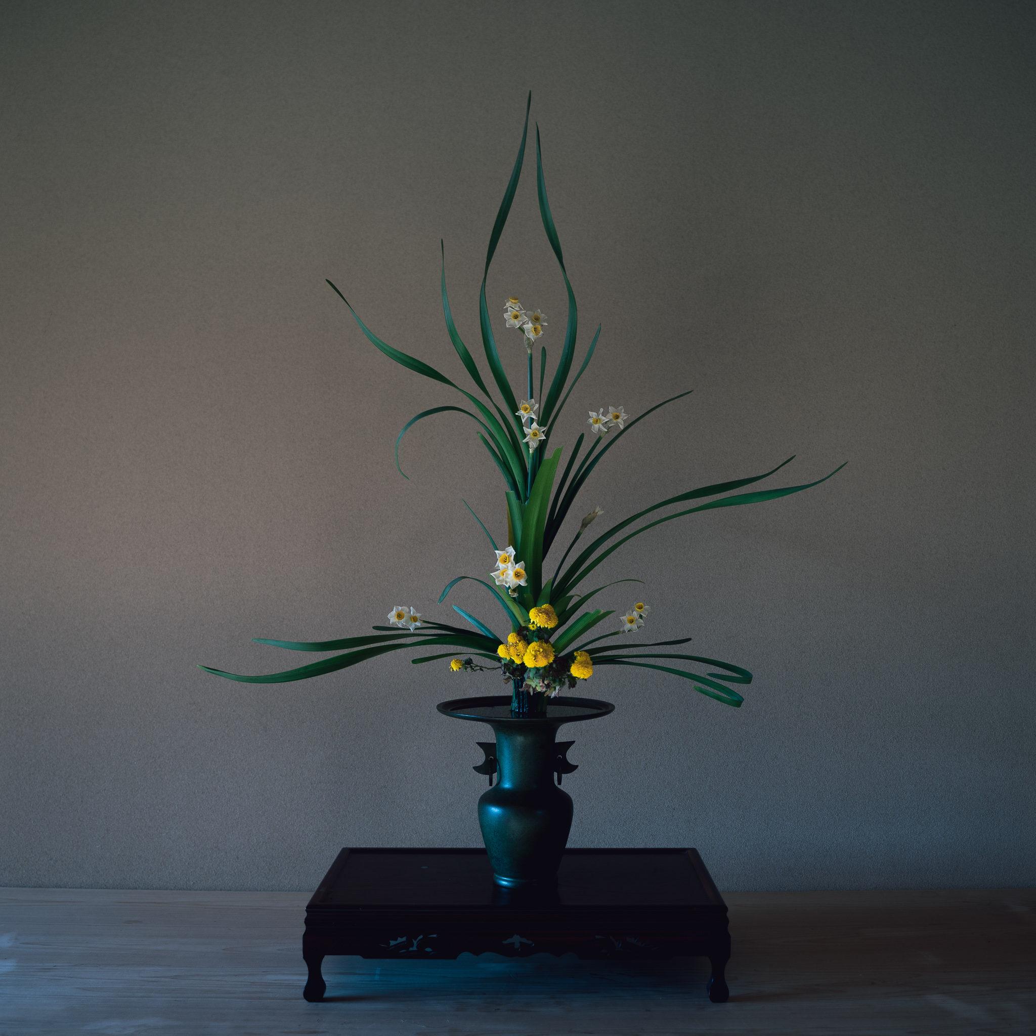 古典立花 水仙、小菊