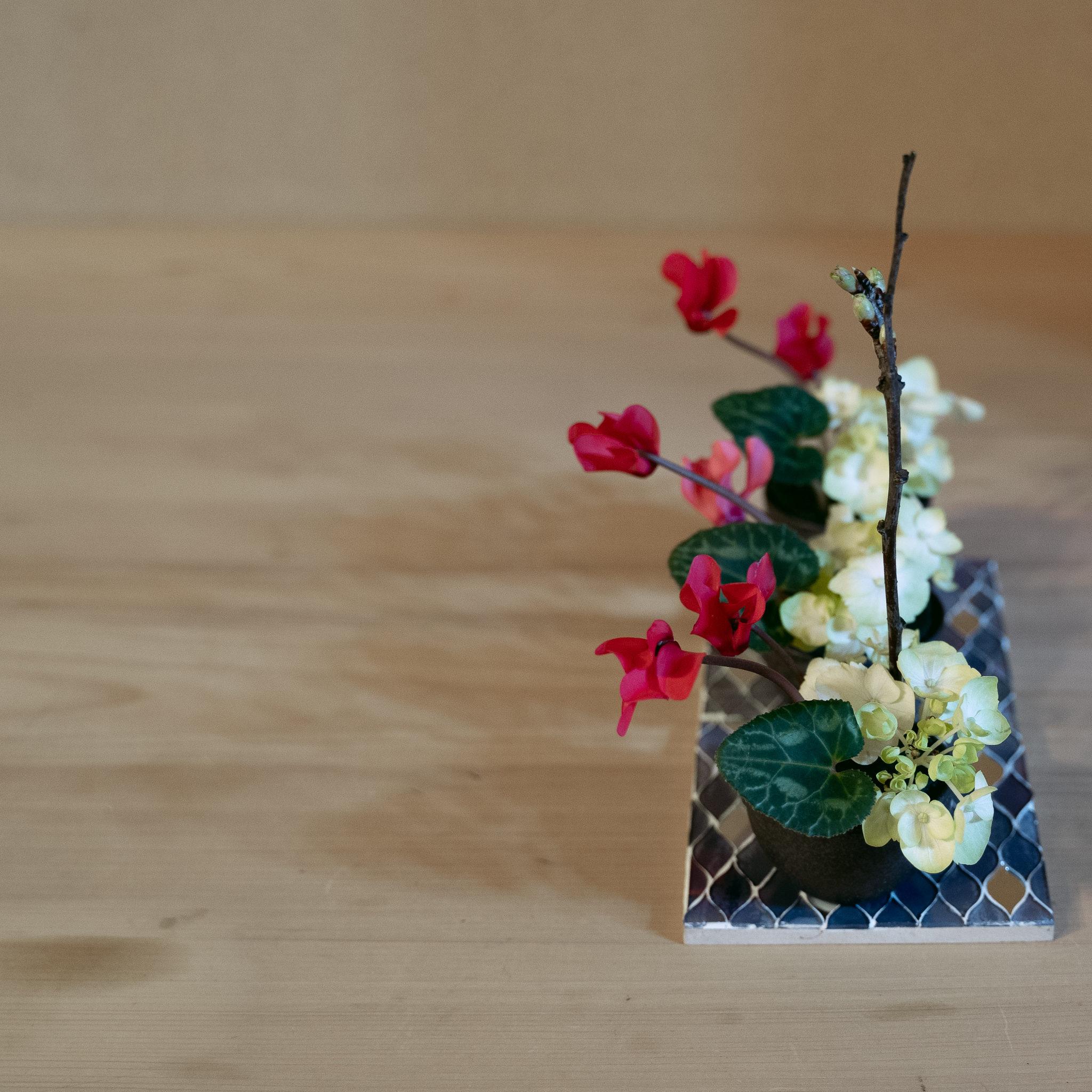 自由花 シクラメン、紫陽花、梅