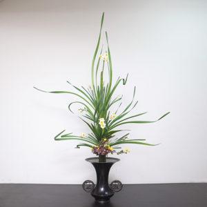 立花正風体 水仙、寒菊、著莪